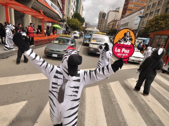 friday-fun-dancing-zebra-traffic-safety-la-paz-bolivia.jpg