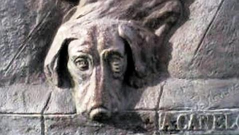 placa-perro-canelo--478x270.jpg
